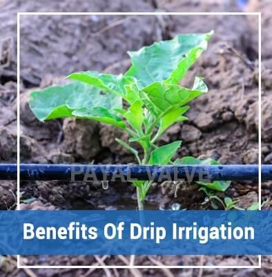 drip irrigation manufacturer, suppliers, India